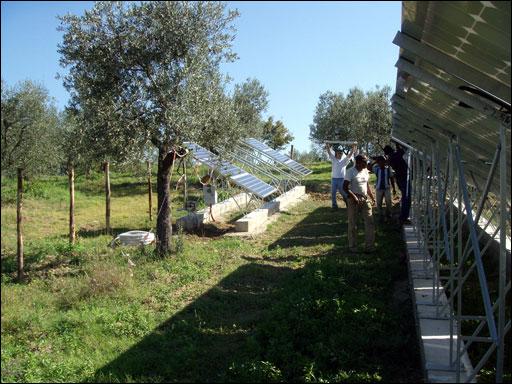 Firenze, impianto tra gli ulivi
